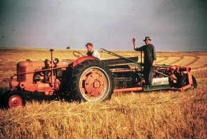 Grandpa Peter farming his land, probably in the 1950s.