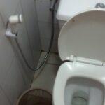 Travel Toilet Faux Pas