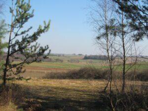 The Polish countryside