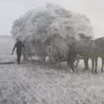 Hoffnungstal, Bessarabia - History of a German Village (Part 2)